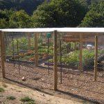 TBG-mini-farm